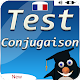 Game french conjugation: learn french conjugation Android apk
