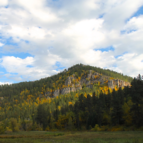 Spearfish Canyon Hill by J.c. Phelps - Landscapes Mountains & Hills ( mountain, fall, field, black hills, trees )