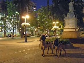 Photo: サンチャゴ http://parajunko.blog.fc2.com/blog-entry-83.html