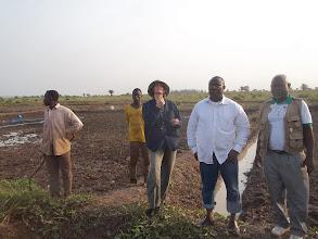 Photo: Site SRI de DOGBA, Bonou, au Benin en amenagement [2012, photo provided by Pascal Gbenou]