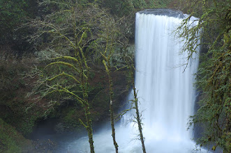 Photo: Silver Falls State Park - Lower North Falls