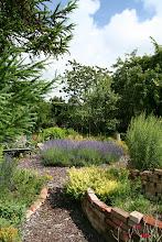 Photo: An der Kräuterspirale vorbei zum Lavendelbeet