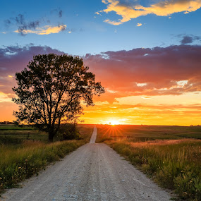 Country Road at Sunset by Kendra Perry Koski - Landscapes Sunsets & Sunrises ( orange, tripp county, hdr, grass, green, beautiful, winner, yellow, road, landscape, cottonwood, country  road, sunburst, sky, autumn, blue, sunset, fall, trees, summer, september,  )