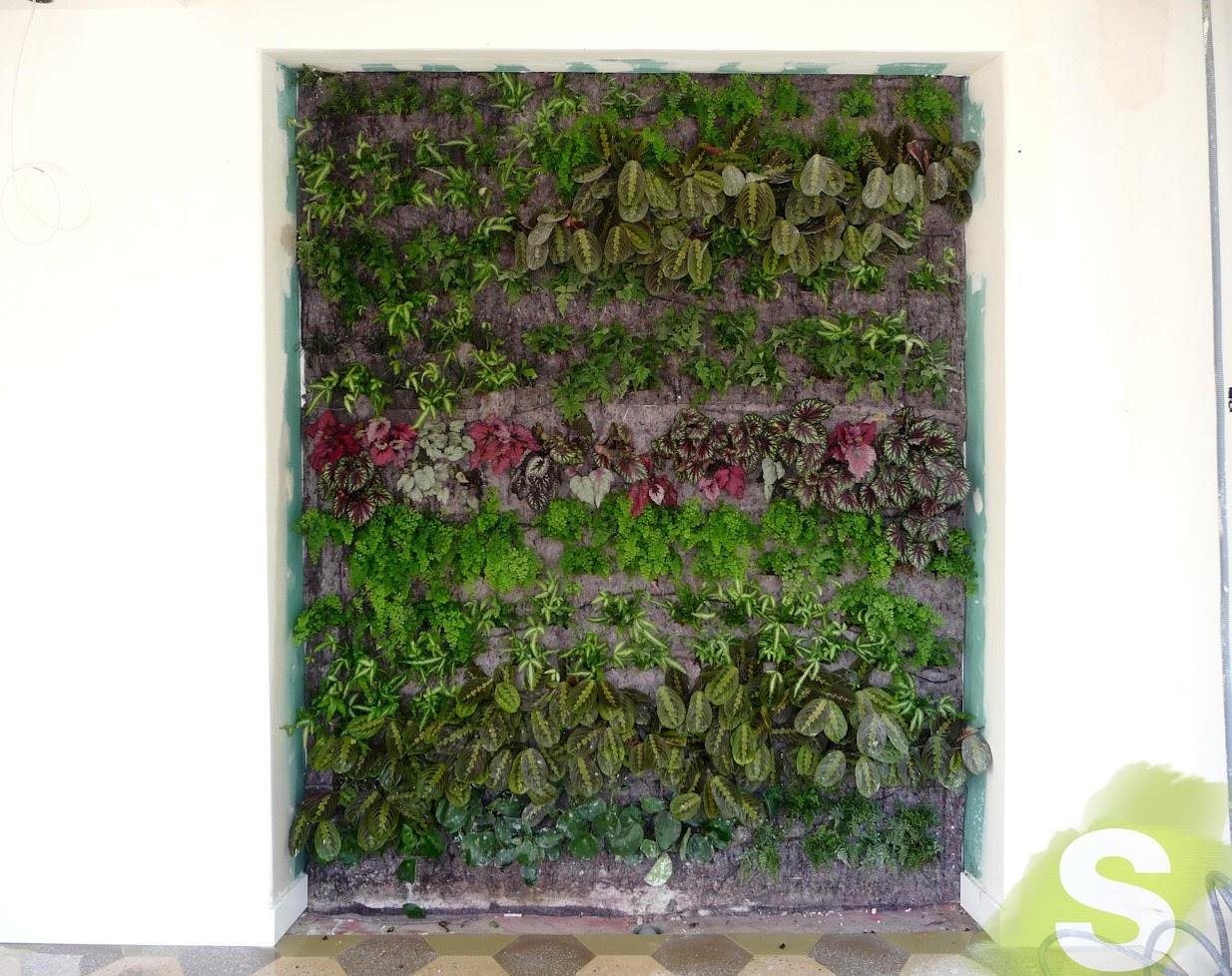 Jardín Vertical en Baleares