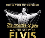 The Wonder of You: The story of Elvis : East London Guild Theatre