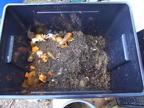 Photo: alul trágya, rajta konyhai hulladék, rajta föld, és ha jól látom a tetején a giliszták. ebben a sorrendben költöztek be a dobozba.