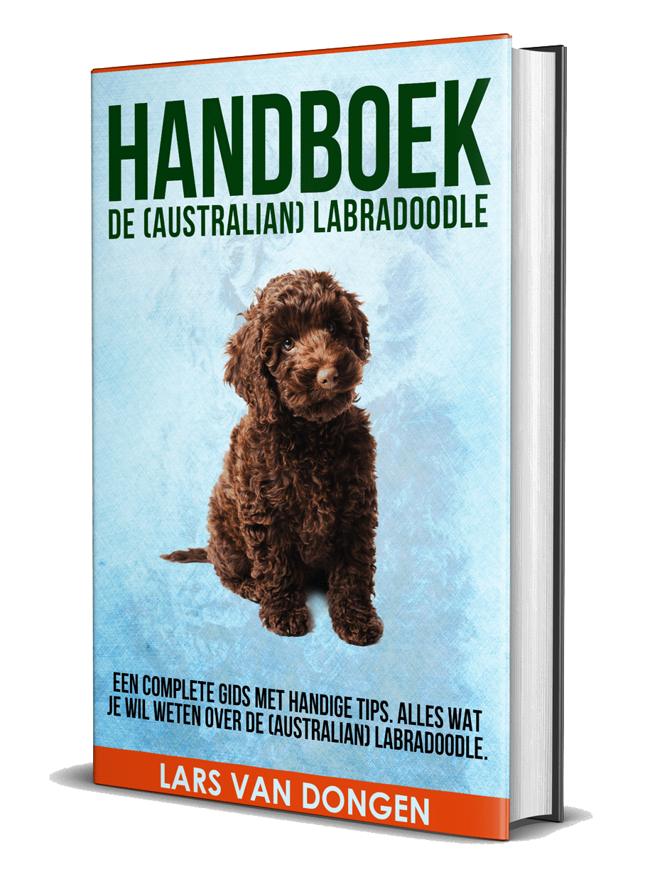 Handboek de (Australian) Labradoodle