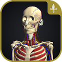 3D Motion Human Anatomy - teamLabBody icon