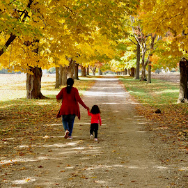Fall Is Beautiful by Krishna Tangutur - People Street & Candids ( momandbaby, fall colors, fall, foilege )