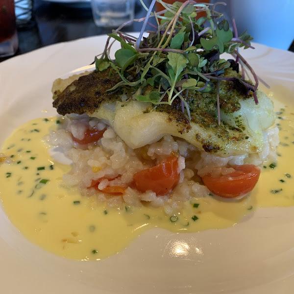 pesto encrusted cod with cherry tomato risotto