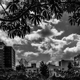 Gloomy Monday!  by Rit Tar - Landscapes Cloud Formations ( monochrome, black and white, landscape, bnw )