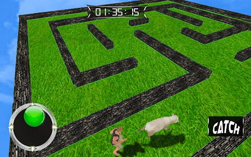 Animal Maze Hunter - náhled