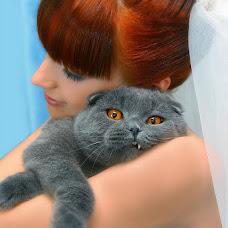 Wedding photographer Alya Luganchenko (Lalenia). Photo of 14.02.2013