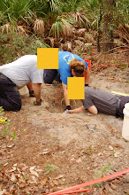 Photo: Removing the soil from the grave.  Careful excavation can reveal all sorts of evidence which you ideally want to find 'in situ' - in place in the grave.