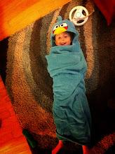 Photo: Angry Birds Wrap