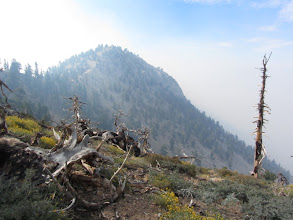 Photo: Looking south toward Middle Hawkins from PCT