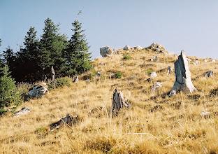 Photo: Az első kövek