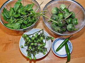 Photo: Thai basil, Thai eggplants, pea eggplants and green serrano peppers for the green curry