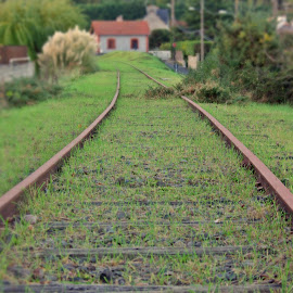 Where do we go now? by Ciprian Apetrei - Transportation Railway Tracks ( autumn, perspective, transportation, brittany, railway tracks )