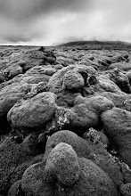 Photo: One of four images I rediscovered from my 2010 trip to Iceland. These lave fields were amazing. Razor sharp rocks covered in inches of moss. Sandals were a bad idea.