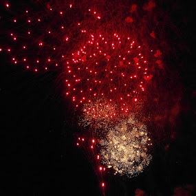 Red Delight by Nicola Graham - Public Holidays Other ( firework, celebrations, fireworks, holidays, guy fawkes )