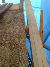 """Photo: square edge of wall plate above round trim to straw building """"corner"""" and temp support post to roof structure ready to drop onto finished wall - when ready."""