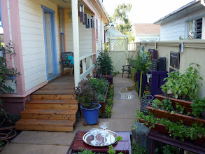 Photo: On kitchen porch--more and better seating to come!