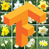Flowers Images Classify with TensorFlow Demo