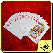 Solitaire - The All in One Game