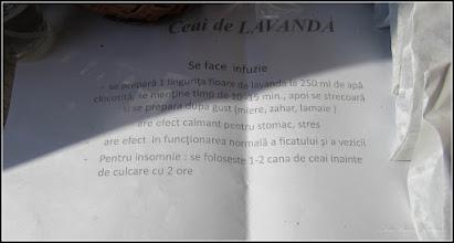 Photo: Lavandă (Lavandula) - din Piata Republicii - Targ de primavara - 2018.03.05