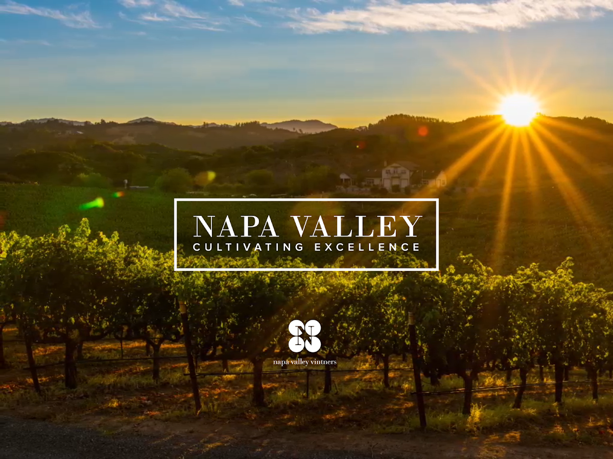 NAPA VALLEY- screenshot