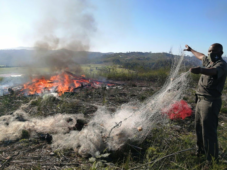SANParks staff burn more than 3km of poachers' gill nets seized from the Touw and Swartvlei estuaries in the Wilderness section of the Garden Route National Park.