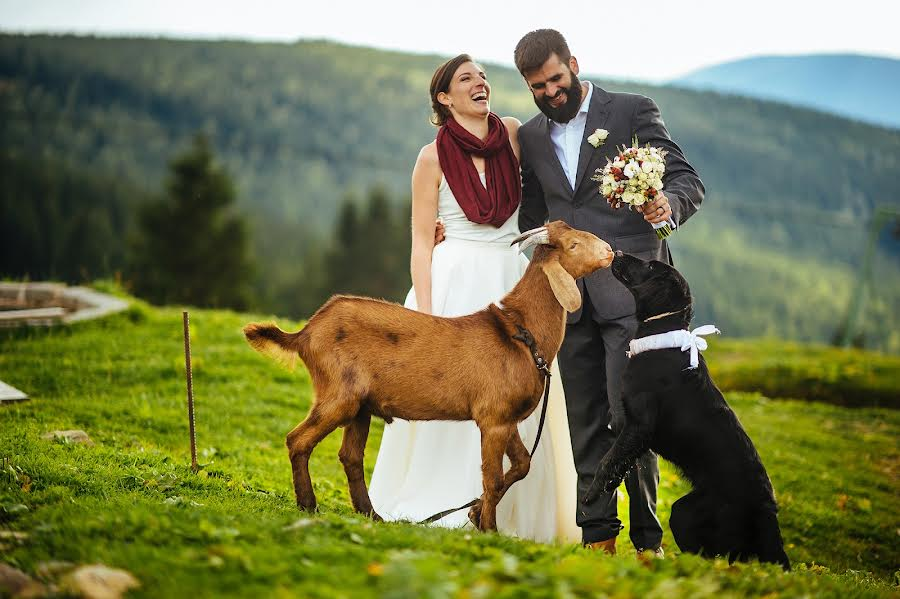 Wedding photographer Petr Wagenknecht (wagenknecht). Photo of 26.09.2015