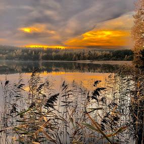 Misty autumn night at Moose Lake by Alf Winnaess - Uncategorized All Uncategorized
