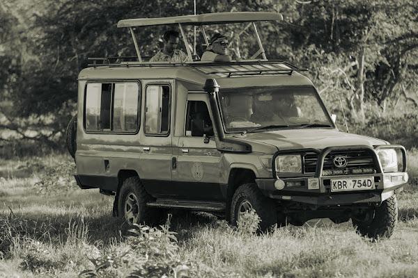 In partenza per il Safari di pierce