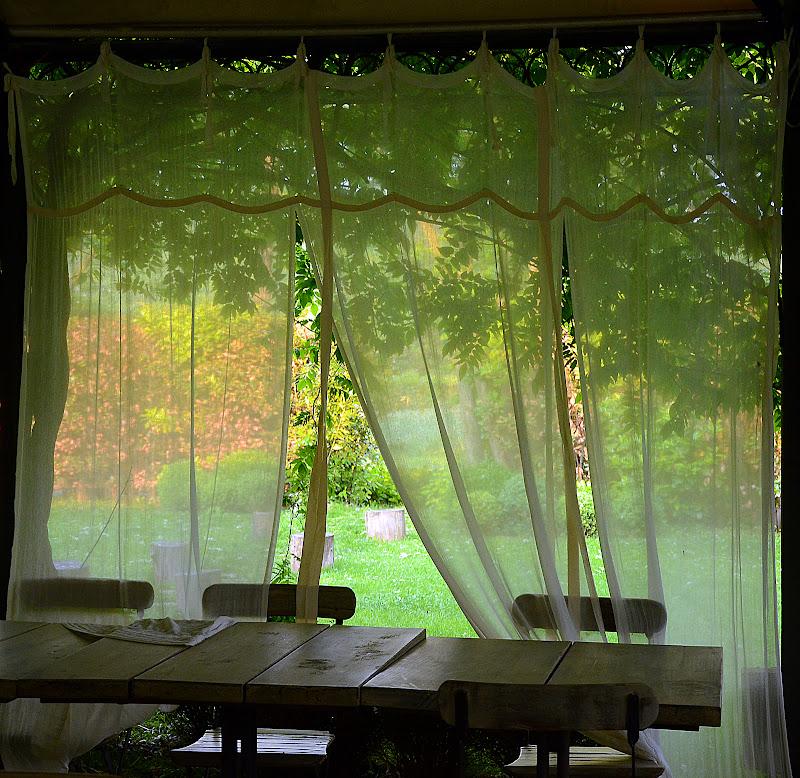 oltre la cortina di nicoletta lindor