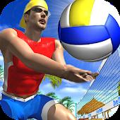 Beach Volleyball 2018