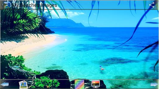 我的海滩图片