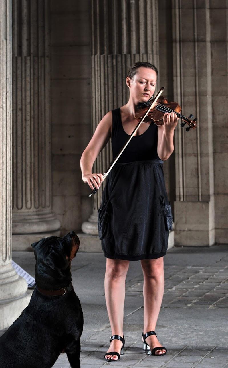 La magia del violino di Aldo Rizzardi