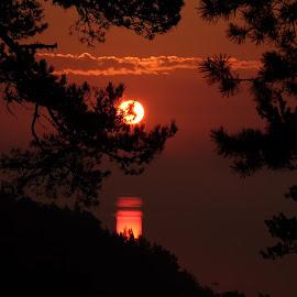 Sunrise  by Alf Winnaess - Uncategorized All Uncategorized
