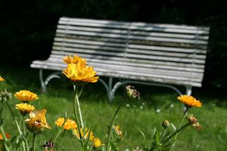 Photo: Überall Plätze zum Niederlassen