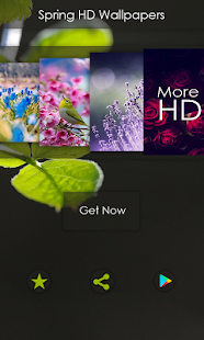 Spring Wallpapers HD - HD Backgrounds (Offline) - náhled