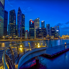 lovers wharf by Lester Woodward - City,  Street & Park  Skylines ( marina bay sands, garden in the bay, singapore, night, lights )