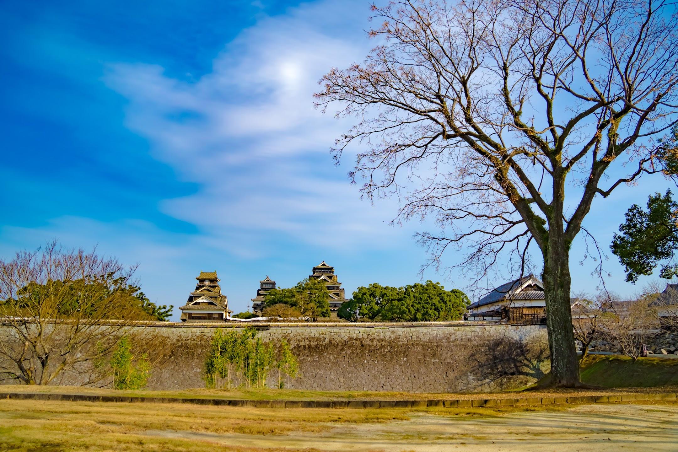 熊本城 二の丸広場 天守2
