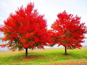 Photo: George Washington Parkway, Washington, DC