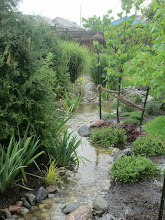Photo: This is a dry creek which in a heavy rainfall becomes a flowering, beautiful water feature. Handling rainwater should NEVER be ugly.