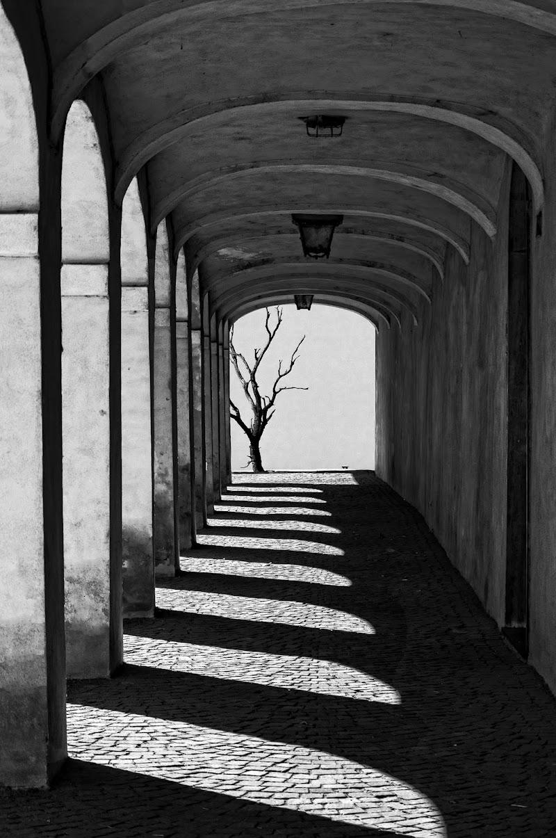 Il portico di Livius