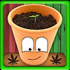 MyWeed - Weed Growing Game icon