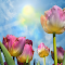 Tulips Of Spring.jpg