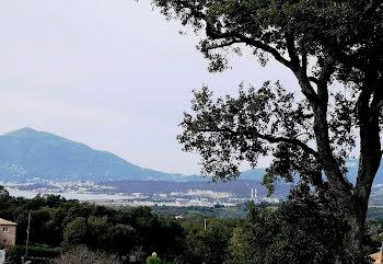 terrain à batir à Argiusta-Moriccio (2A)